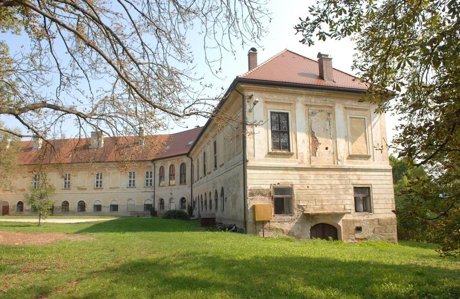 Janko Mrsic-Flogel's mother pleads poverty living in this castle